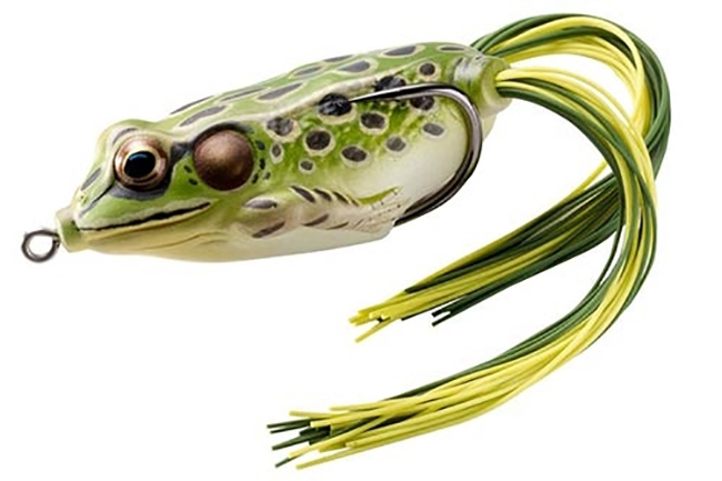 10 Must Have Fishing Gadgets Frog
