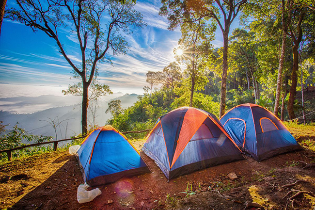 How to cut costs while travelling Camping