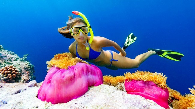 Get Aquatic Adventures in Maldives
