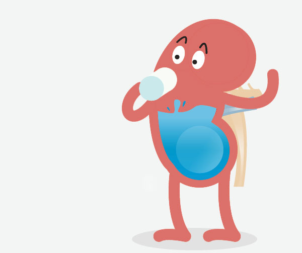 Benefits of Drinking Water Is No Kidney Damage