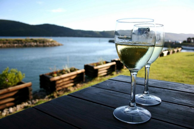 Countries that offer the best wines