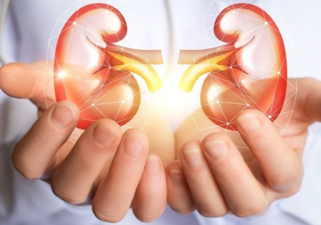 Top 8 Ways To Take Care Of Your Kidneys